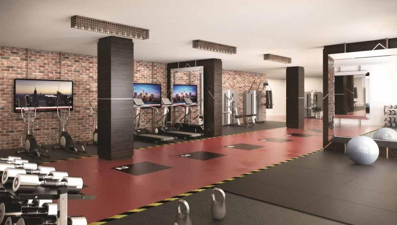Gymnasium-1024x620-2